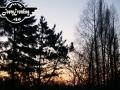 landschaften-90