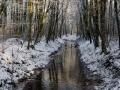 winter-133