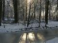winter-134