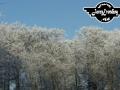 winter-139