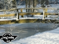 winter-142