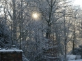 winter-150