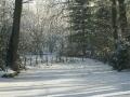 winter-151
