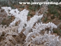 winter-17