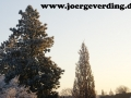 winter-27
