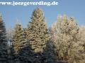winter-38