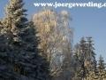 winter-40