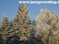 winter-44