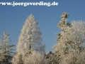 winter-56