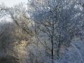 winter-64