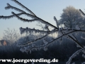winter-68