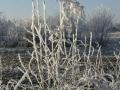 winter-84