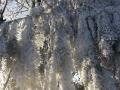 winter-91